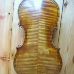 maggini copy violin back canterbury violins